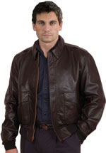 A2 Airforce Leather Bomber